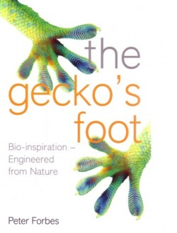 Peter Forbes the gecko foot